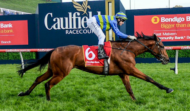 Caulfield Cup Winners Past Greats Who Won The Caulfield Cup