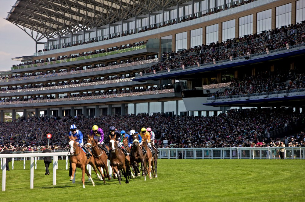 A Guide To The Most Beautiful Horse Racing Venues Racing Venues